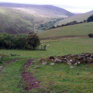The track to Black Tor